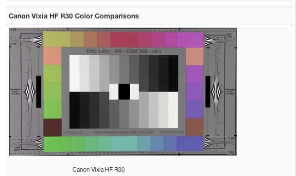 Canon Vixia HF R30 Color Comparisons.jpg